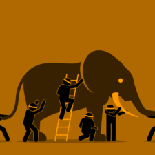 ELEPHANT - CERCLE D'ALLIES